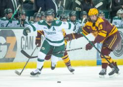 WHockey Vs #2 Minnesota (02/23/19)