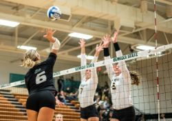 Volleyball Vs Wayne State (10/26/19)