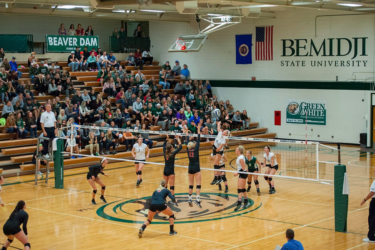 Bemidji State volleyball hosts Minot State and U-Mary for homecoming weekend