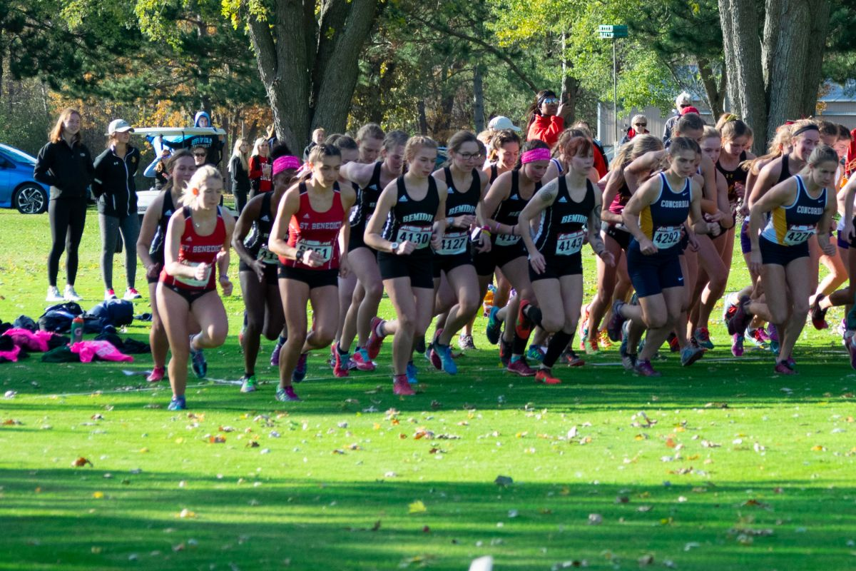 Beaver Cross Country led by Prigge at NSIC Championships Saturday