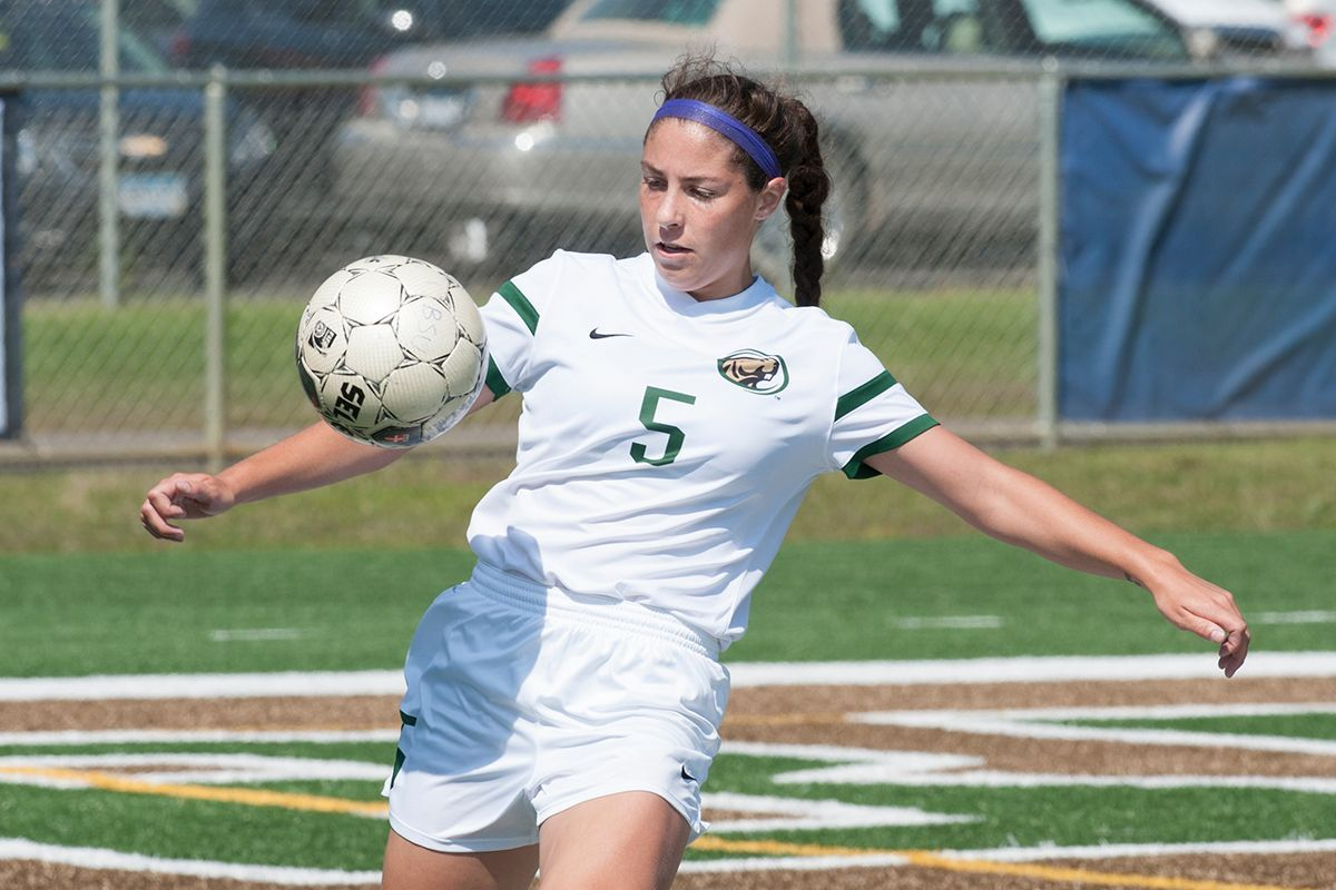 Arneson posts shutout to cap road trip with 3-0 win