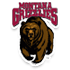 Montana College