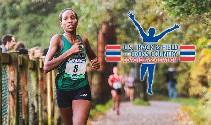 Caroline Kurgat will aim to defend her GNAC cross country championship on Oct. 21 in Bellingham, Wash.