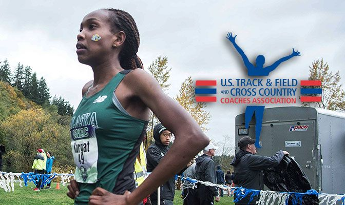 Racing in her last GNAC Cross Country Championship, Kurgat defended her title with a time of 20:49.2. Photo by Nick Danielson.