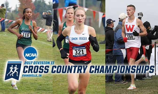 Karoline Kurgat (left), Julia Howley (center) and David Ribich (right) lead the three GNAC teams selected for the NCAA Cross Country Championships.