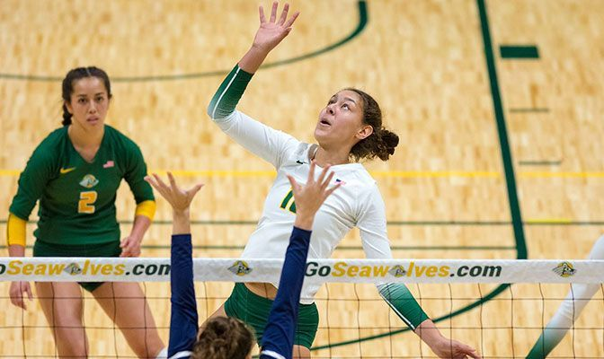 Then There Were Two: Nanooks & Seawolves Undefeated