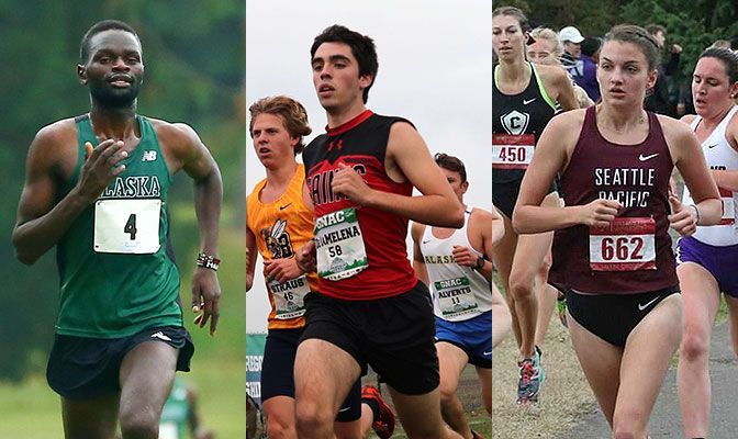 Felix Kemboi (left), Miguel De LaMalena (center) and Elizabeth Thompson are all four-time honorees on the GNAC Cross Country All-Academic Team.