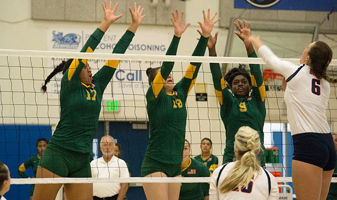 Alaska Anchorage ranks third in the conference in blocks with 2.50 per set. Photo by Sarah Rutherford.