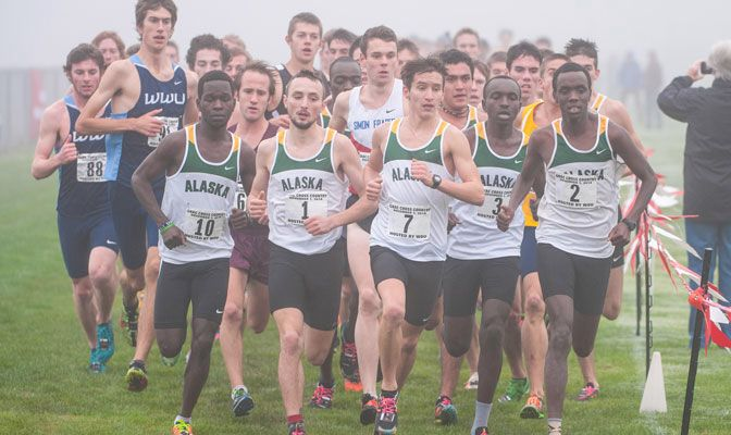 Seven of the first ten runners to cross the finish line at the 2014 GNAC championship were from Alaska Anchorage.