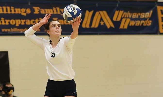 In her second-year as a starter for Montana State Billings, Hannah Hashbarger has a 4.00 GPA as a business administration major.