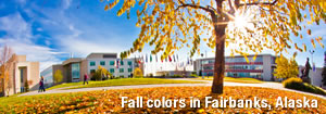 Fall colors in Fairbanks, Alaska