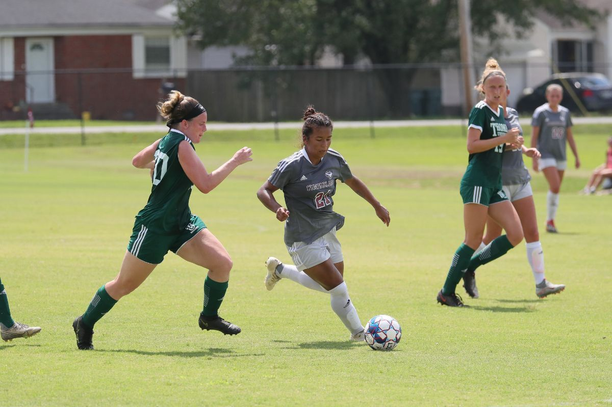 Seven Phoenix Score in 8-1 victory over Brewton Parker