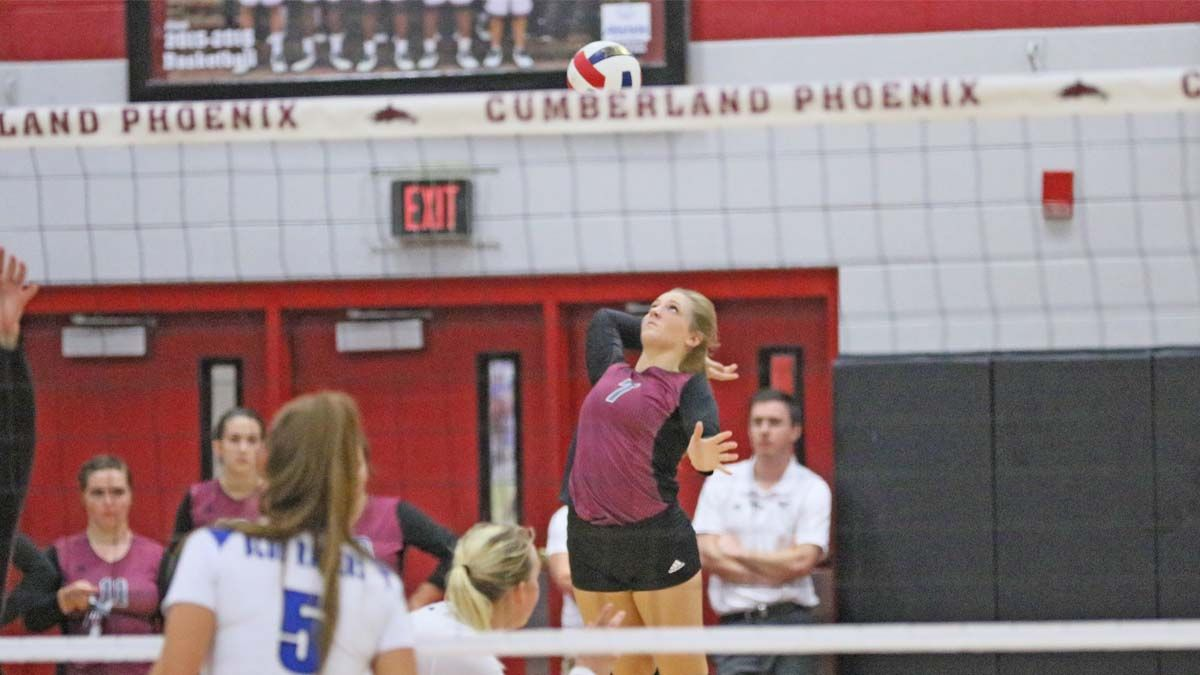 Volleyball wins in four over Eagles, sweeps Lions