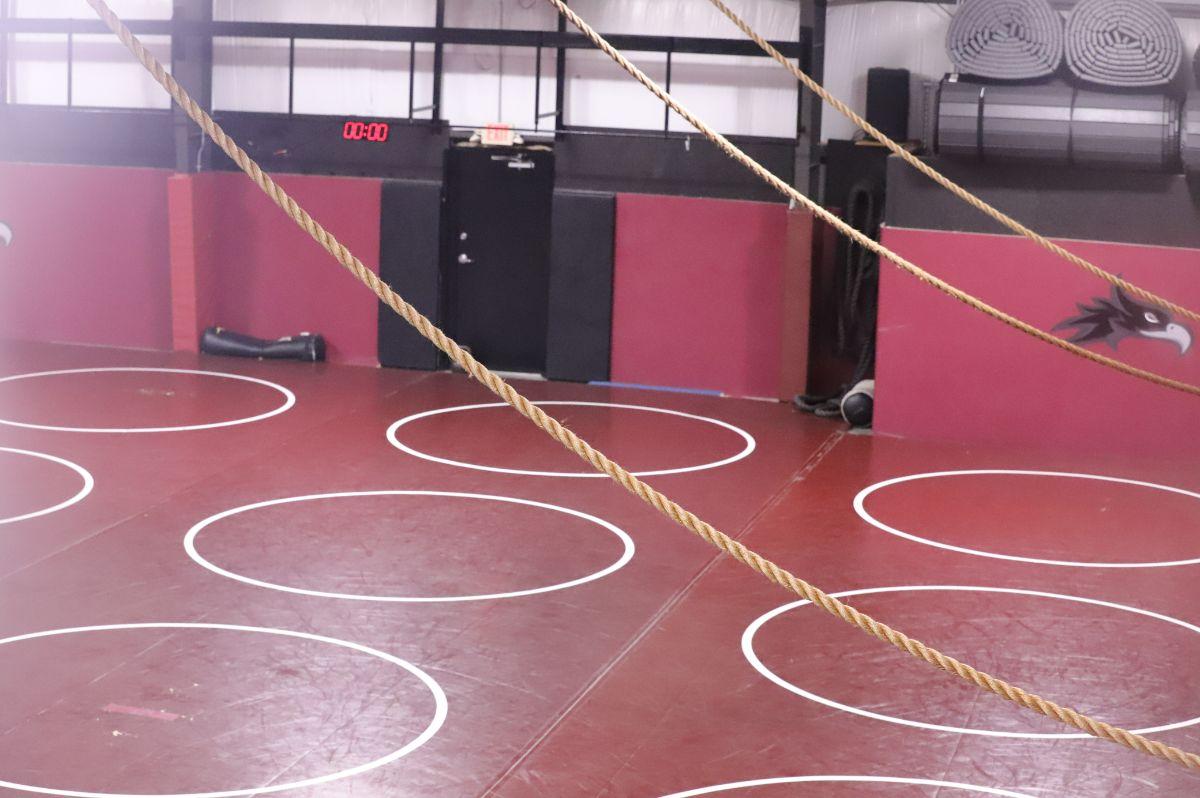 Wrestling Training Center Picture 7