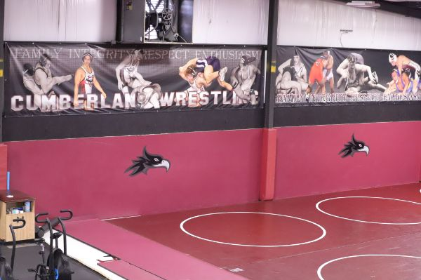 Wrestling Training Center Picture 5