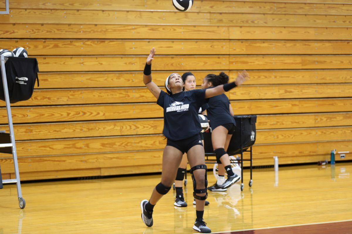 Volleyball Preseason Practice