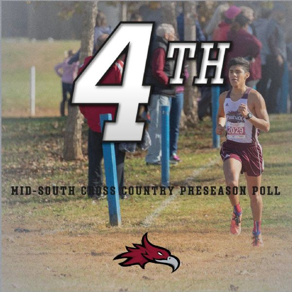 Men's Cross Country selected Fourth in MSC Preseason Coaches Poll