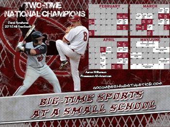 2011 Baseball Wallpaper