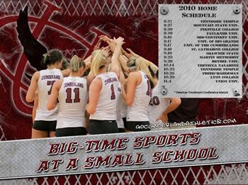 2010 Volleyball Wallpaper
