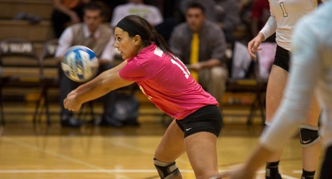 Volleyball Wins Sixth Straight by Downing Illinois State