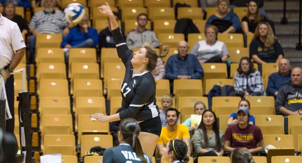 Volleyball Bounces Back With Sweep of Bradley