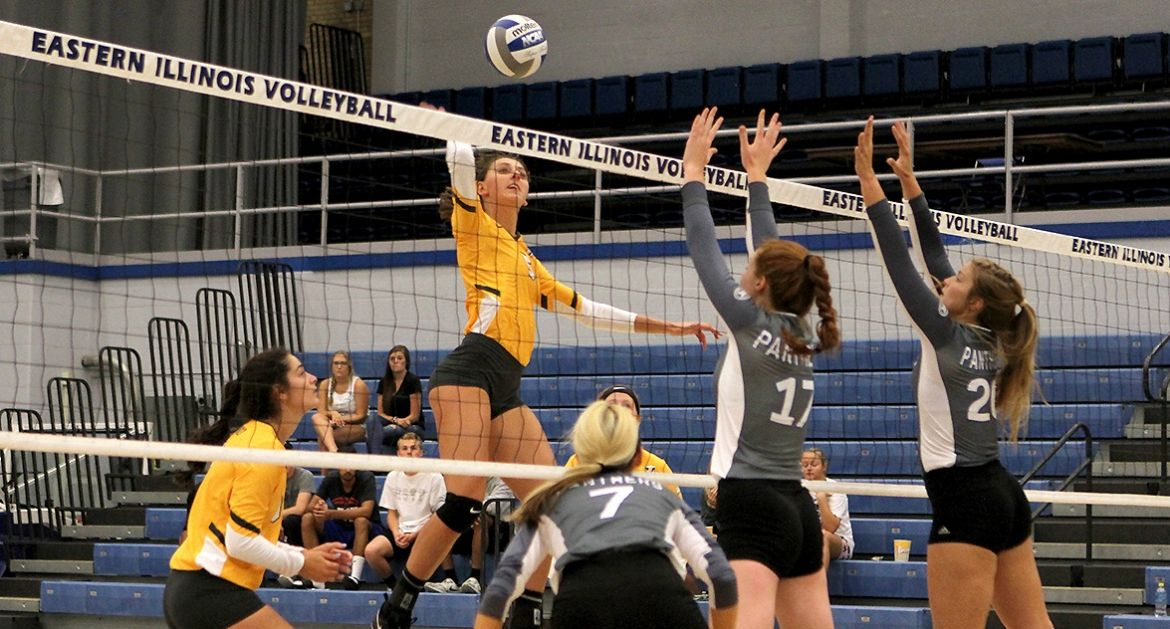 Volleyball Takes Two Saturday; Carlson Hits 1,000 Career Digs