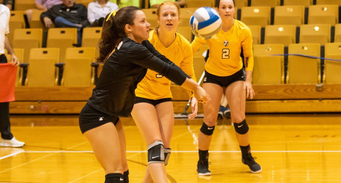 Volleyball Wins 11th Straight, Clinches Best Start in Program History