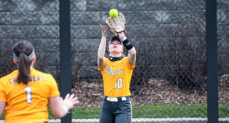 Softball Drops Games to Louisville, WKU Saturday