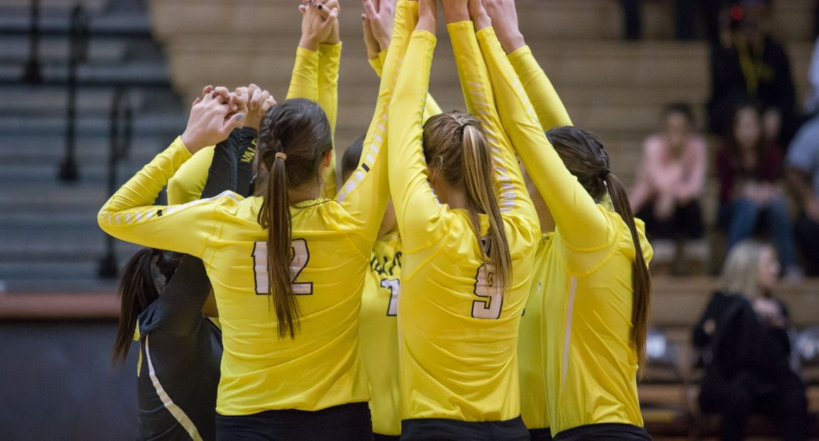 Volleyball Ready to Return to the ARC