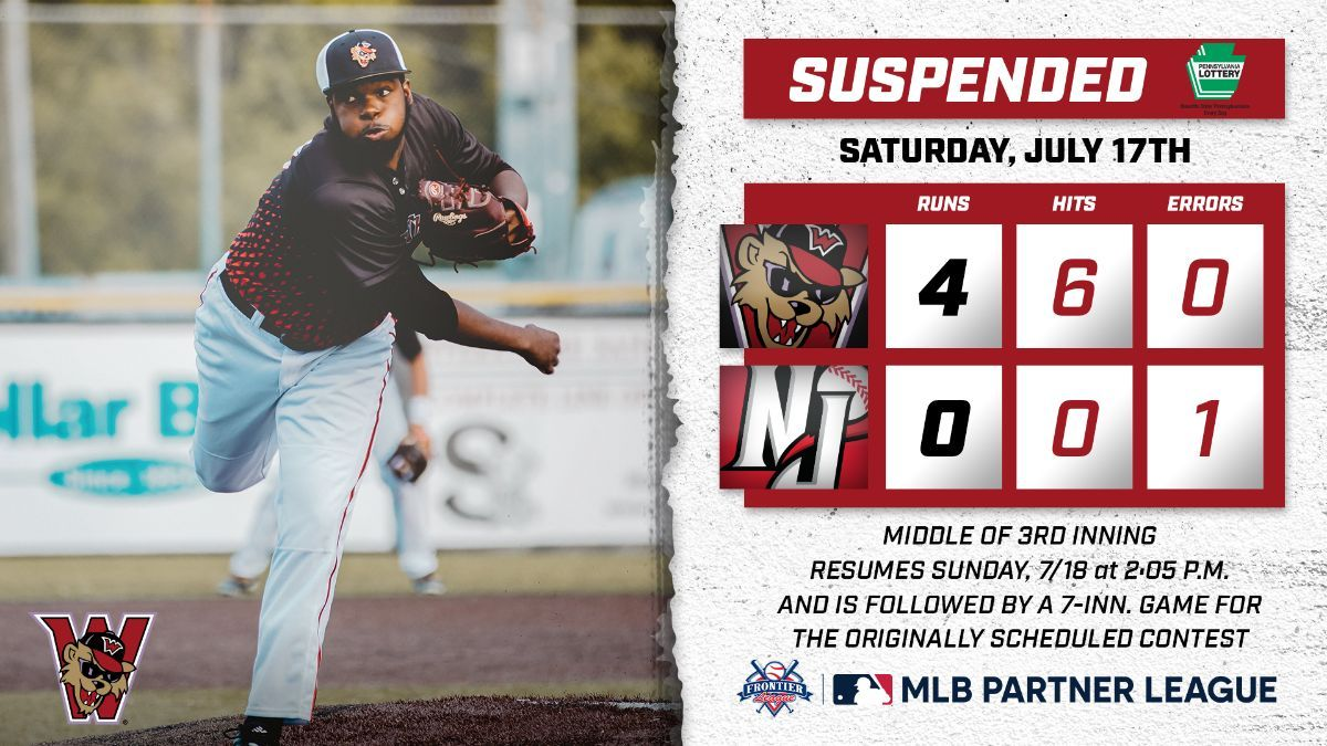Saturday's Game Suspended With Wild Things Up 4-0
